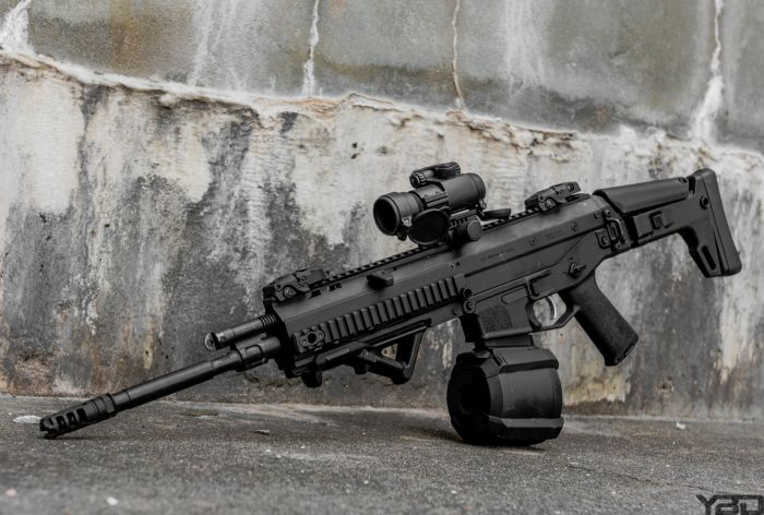 Bushmaster ACR with Aimpoint PRO red dot.