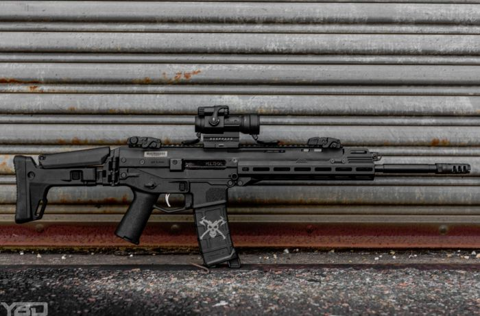 One amazing rifle.  The Bushmaster ACR with Aimpoint PRO red dot.