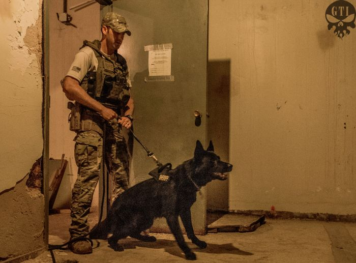 Our Director Of Training Dennis O'Connor has an extensive history with SWAT tactics and operations as well as training police canines and loves incorporating them in SWAT training whenever possible.
