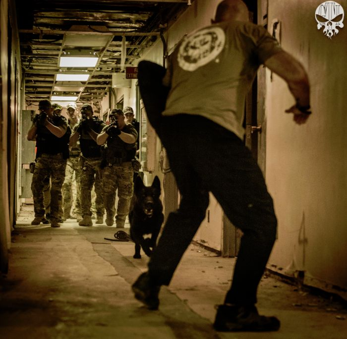 Director Of Training Dennis O'Connor preparing to take a bit during some CQB training during one of our Basic SWAT Courses.