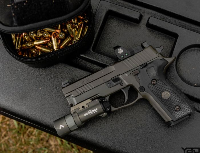 The Sig Sauer P229 Legion with their ROMEO red dot.