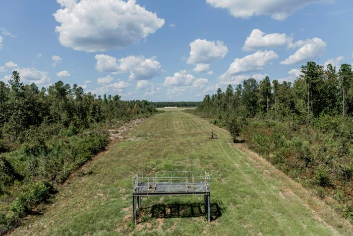 A view from the back of our 800 yard sniper range.