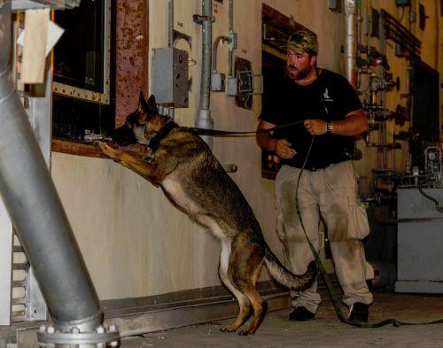 Custom Canine Unlimited Criminal Interdiction Basics